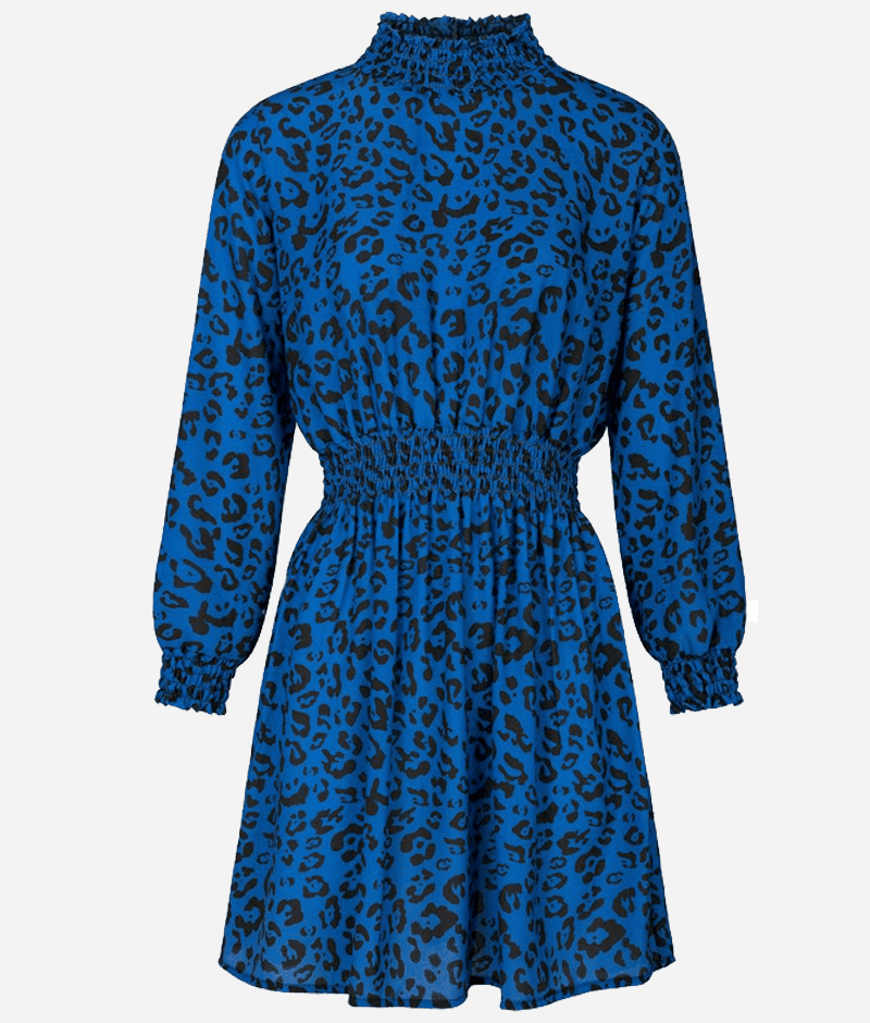 Leopard_babe_dress_blue